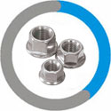 Alloy 20 Flange Nuts
